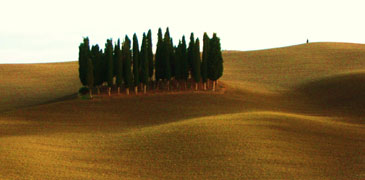 orcia2